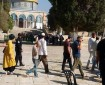 عشرات المستوطنين يدنسون باحات المسجد الأقصى