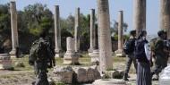 قطعان المستوطنين تقتحم الموقع الأثري في سبسطية