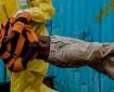 الكونغو: اكتشاف ثالث إصابة بفيروس إيبولا
