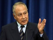 أبو الغيط: مواقف عربية جماعية لمواجهة الغطرسة التركية