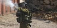 سلفيت: الاحتلال يطلق النار على شاب بزعم رشقه قوة عسكرية بالحجارة