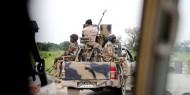 نيجيريا: 20 قتيل في هجوم مسلحين على قرية