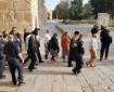 بالفيديو|| عصابات المستوطنين تجدد اقتحاماتها الاستفزازية للمسجد الأقصى