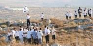 مستوطنون يقتحمون موقعًا أثريًا جنوب جنين تحت حماية الاحتلال