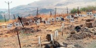 الجامعة العربية تدعو إلى تحرك دولي بشأن جثامين الشهداء المحتجزة لدى الاحتلال