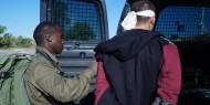 محدث بالفيديو|| الاحتلال يعتقل مواطنًا حاول خنق جندي على معبر الكرامة