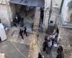 بالفيديو: إصابة مجندة إسرائيلية جراء عملية طعن في البلدة القديمة بالقدس