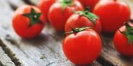دراسة: الطماطم تعمل على تحسين الخصوبة!!