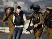 الاحتلال يعتقل مواطنا من بيت أمر