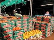التضخم السنوي في الجزائر يتراجع