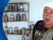 خاص بالفيديو|| مزارع فلسطيني ينشئ بنكا وطنيا لحفظ البذور الزراعية