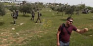 الاحتلال يمنع المزارعين من الوصول إلى أراضيهم في الخليل