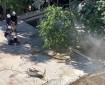 آليات الاحتلال تهدم مسكنا زراعيا في بلدة دورا