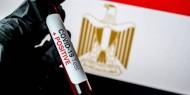 """مصر: بدء التصنيع المحلي للقاح """"سينوفاك"""" الشهر المقبل"""