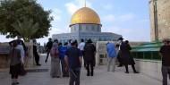 الأمم المتحدة تدعو إسرائيل إلى احترام الوضع الراهن في القدس