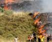 تصاعد هجمات المستوطنين على أراضي المواطنين في جبل صبيح