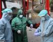 """الخدمات الطبية بغزة تعلن ارتفاع عدد مصابي """"كورونا""""بين كوادرها إلى 10"""