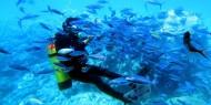 مرجان.. جمعية مقدسية تضم طاقما من الغواصين لتقديم المساعدة في حالات الطوارئ