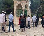 103 مستوطنين اقتحموا ساحات المسجد الأقصى بالفترة الصباحية اليوم