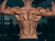خاص بالفيديو|| تمارين عضلات الظهر وفوائدها وكيفية القيام بها