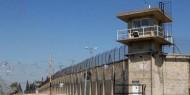 المحرر ياسر صالح يروي تفاصيل هروبه من سجن النقب الصحراوي